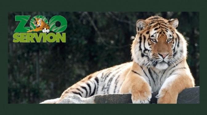 Sortie familiale au zoo de Servion – Samedi 16 juin 2018