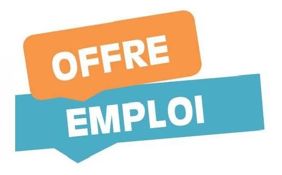 offre d'emploi : Référent(te) familles coordinateur(trice) centre social